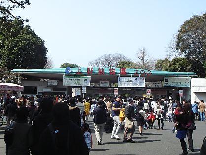 やってきました上野動物園