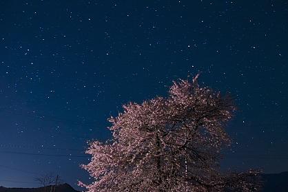 晩春の信州路へ